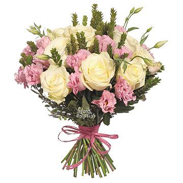 Комнатные цветы фото и названия твердые листья