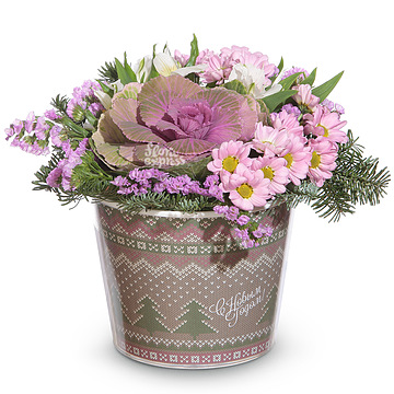 Букет Зимние цветы